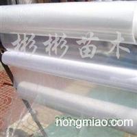 供应加厚型塑料大棚膜