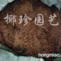 供��普通椰糠
