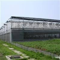 供应薄膜温室