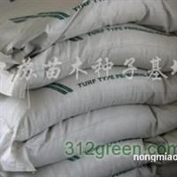 供应早熟禾、高羊茅、黑麦草、狗牙根、剪股