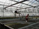 供应灌溉系统