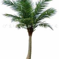 供应仿真椰子树、人造椰子树、仿真树、椰子树