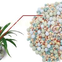 供应彩色多功能营养陶粒