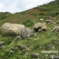 供应各类大小规格景观山石