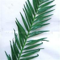 供应仿真棕榈叶.室外仿真椰树叶.仿真植物.人造植物