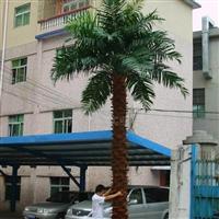 供应仿真椰子树.室外仿真椰子树.仿真树.仿真植物