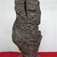 供应珊瑚化石