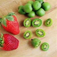 出售软枣猕猴桃苗蓝莓苗钙果苗