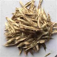 辽宁省黄金树种子/东北黄金树种子
