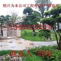 苏州高档别墅庭院设计、豪宅庭院绿化工程