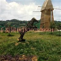 农村旅游景区,生态农庄规划设计,观光农业