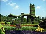 专业设计制作五色草造型 立体花坛 绿雕