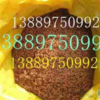 山桃稠李种子价格一览表