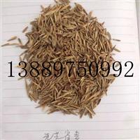 无芒雀麦种子价格一览表