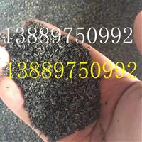 黑心菊种子价格一览表
