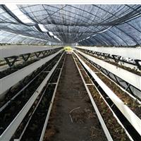 新型立体农业-PVC草莓立体种植槽