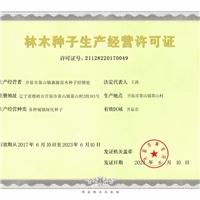 辽宁省高羊茅种子价格一览表