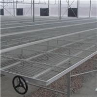 大棚蔬菜栽培镀锌苗床 热镀冷镀锌苗床差异