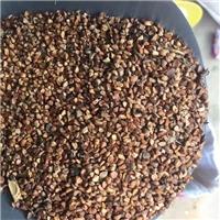 辽宁省黄刺玫种子价格一览表