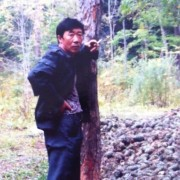 吉林苗木供应