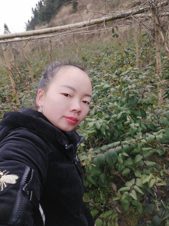 溆浦县旺达羊肚菌种植专业合作社