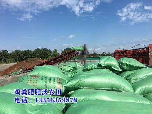 北京鸡粪,河北发酵鸡粪,山东干鸡粪肥田