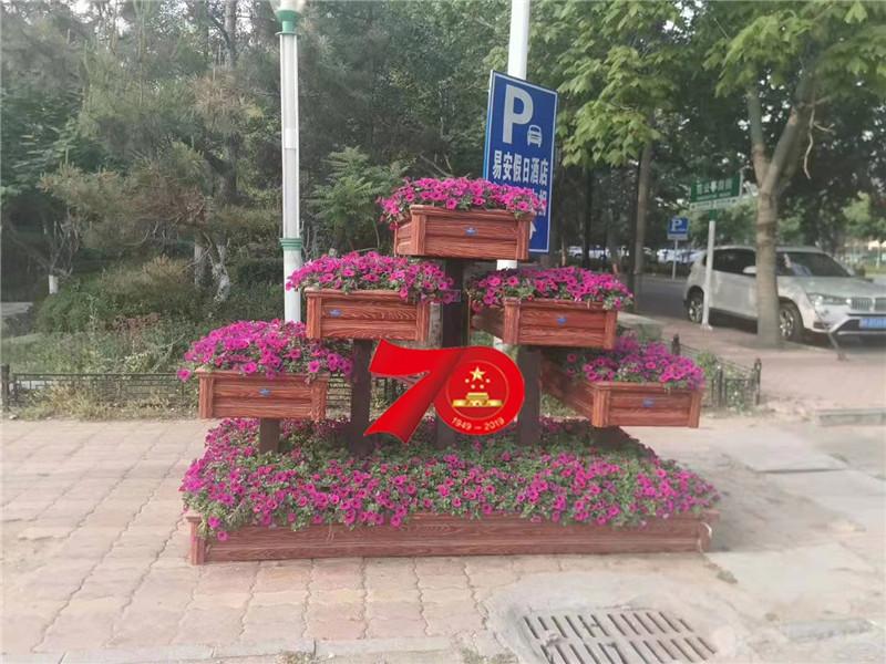 青州鼎诺花卉垂吊牵牛产地直销