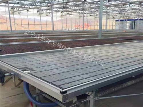 桓台C50型潮汐式苗床定制加工