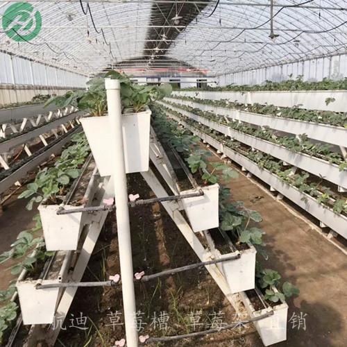 供应环保耐用型草莓槽-A字型4层立体种植
