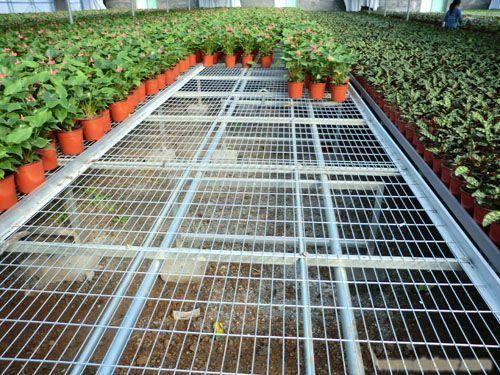 智能温室可上下调节高度育苗床-华耀农业
