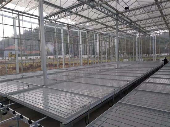 W1-02物流苗床报价-华耀农业设备厂