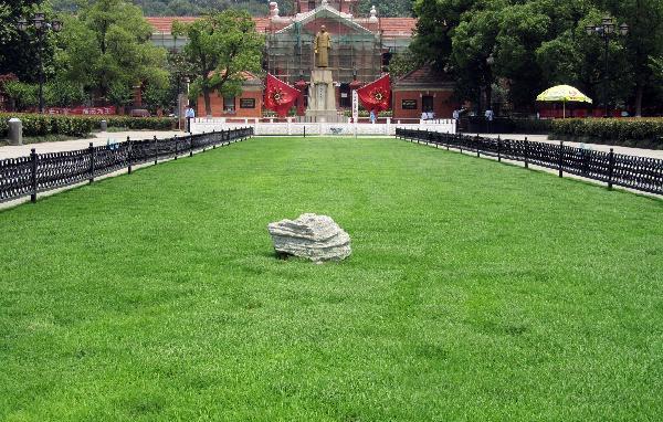 栾城绿盛草坪种植基地