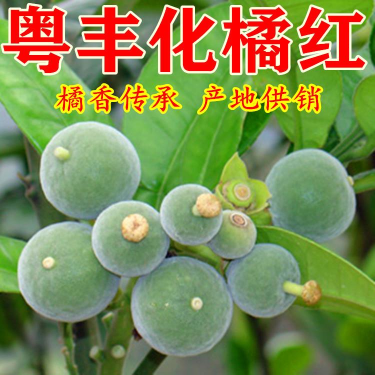 粤丰化橘红种植发展有限公司