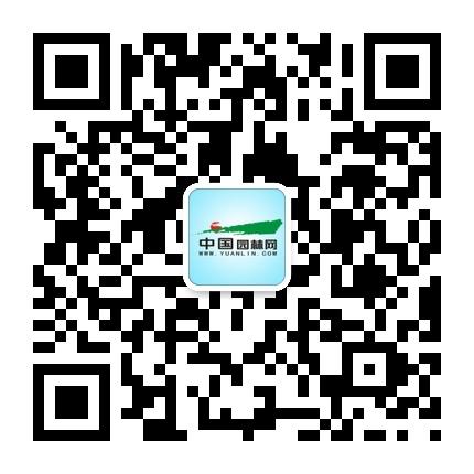 园林网微信公众号