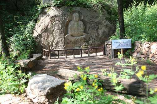 锦州:2000余棵公益树扎根北镇国家森林公园