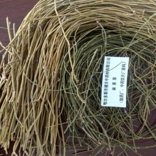 麻黄草人工栽培管理技术