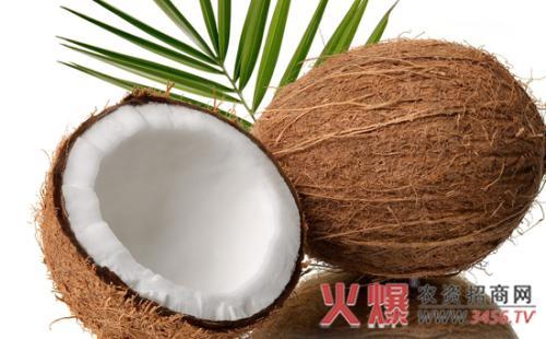 椰子育苗技术