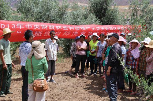 云南:林业标准制(修)正式出台管理措施