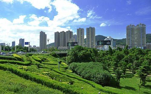 厦门将创建国家生态园林城市 拟新增100公顷公园绿地
