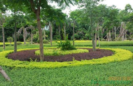 《厦门经济特区园林绿化条例》上午表决通过