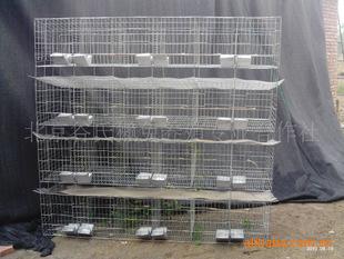 獭兔笼 种兔笼 商品兔笼 子母笼 獭兔笼价格