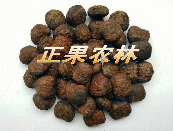 专业供应精选进口油桐种子