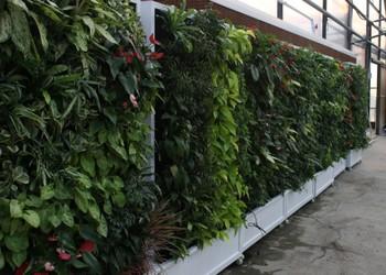 杭州屋顶绿化即将闪耀启幕