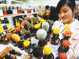 第14届中国国际花卉园艺展览会