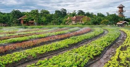 农庄变身休闲农业旅游景区该这么做?