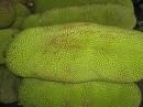 供马来西亚1号海南产水果优质菠萝蜜,100斤起发