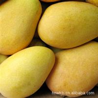批发供应海南水果新鲜大台农芒果