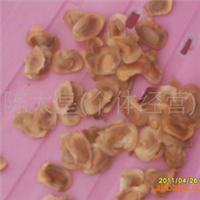 供应新摘非洲楝种子(塞楝、非洲桃花心木)