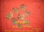 印度紫檀种子    珍贵苗木种子    60元/斤