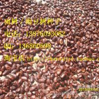 雨树/雨豆树种子